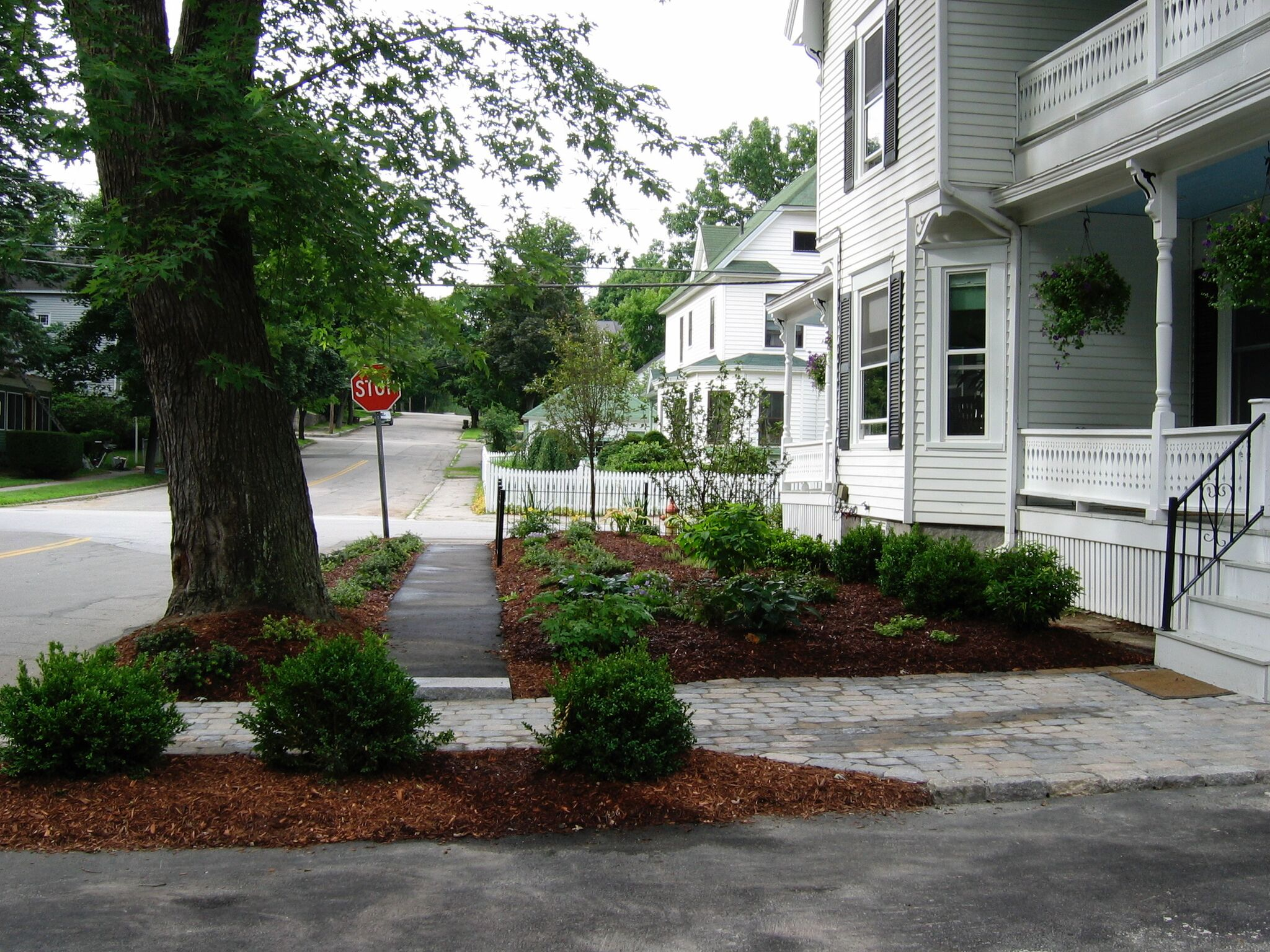 Urban Plant Bed and Cobblestone Walkway